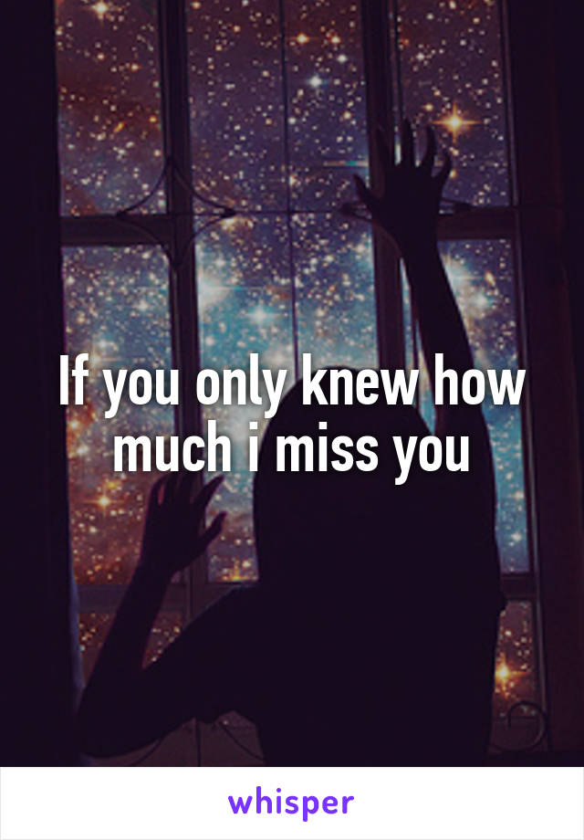If you only knew how much i miss you