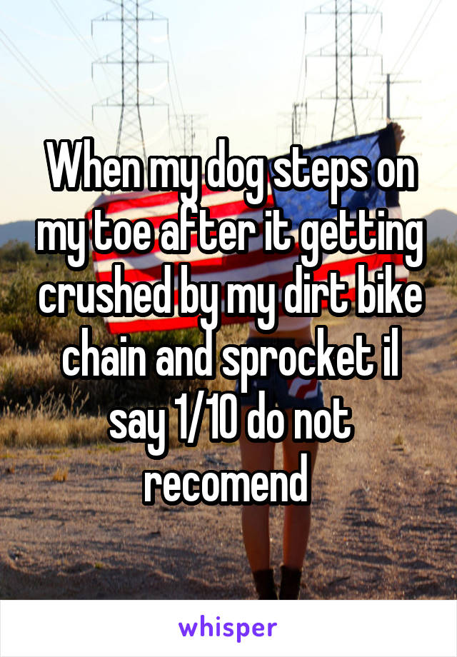 When my dog steps on my toe after it getting crushed by my dirt bike chain and sprocket il say 1/10 do not recomend