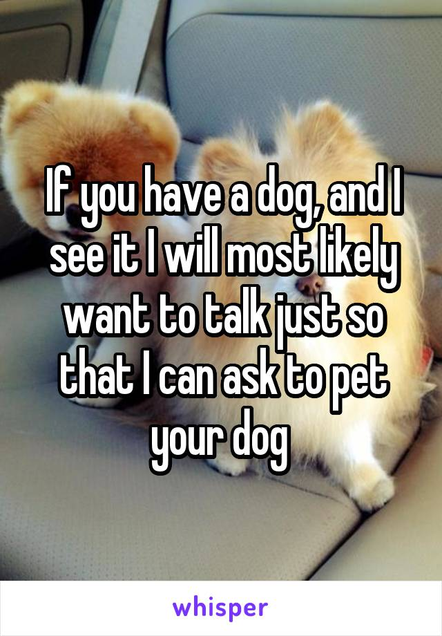 If you have a dog, and I see it I will most likely want to talk just so that I can ask to pet your dog