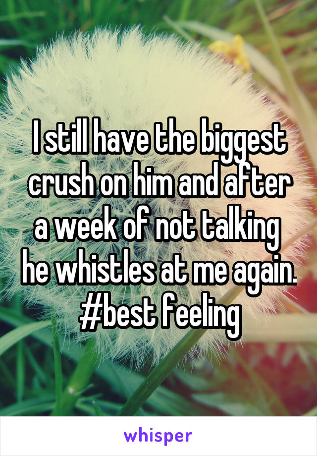 I still have the biggest crush on him and after a week of not talking  he whistles at me again. #best feeling
