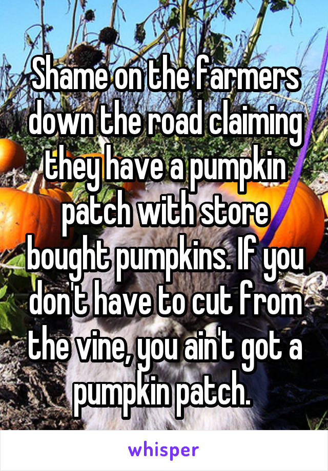 Shame on the farmers down the road claiming they have a pumpkin patch with store bought pumpkins. If you don't have to cut from the vine, you ain't got a pumpkin patch.