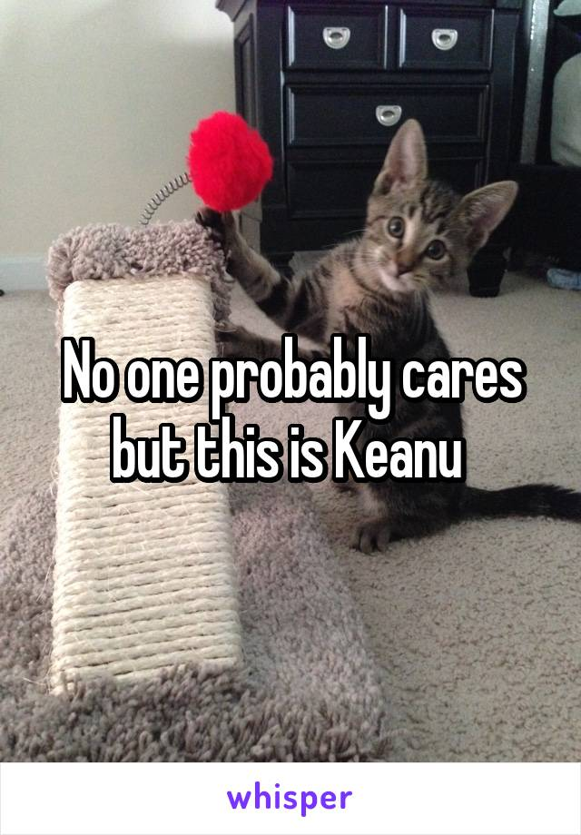 No one probably cares but this is Keanu
