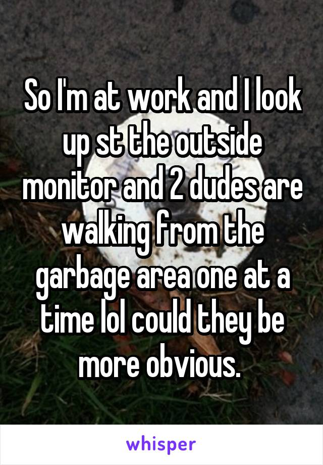 So I'm at work and I look up st the outside monitor and 2 dudes are walking from the garbage area one at a time lol could they be more obvious.