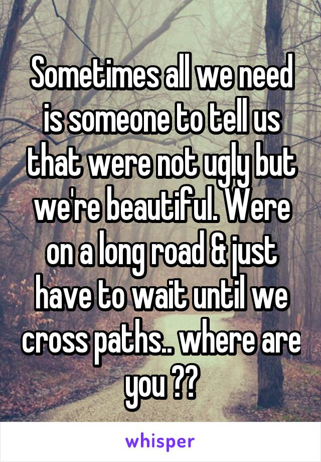 Sometimes all we need is someone to tell us that were not ugly but we're beautiful. Were on a long road & just have to wait until we cross paths.. where are you ??