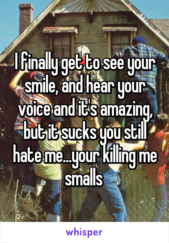 I finally get to see your smile, and hear your voice and it's amazing, but it sucks you still hate me...your killing me smalls