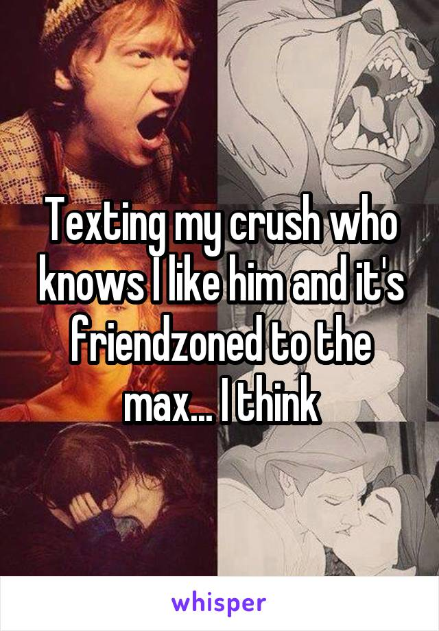 Texting my crush who knows I like him and it's friendzoned to the max... I think