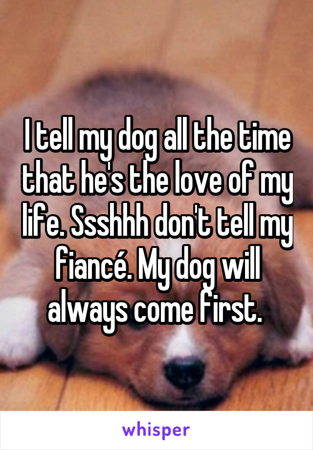 I tell my dog all the time that he's the love of my life. Ssshhh don't tell my fiancé. My dog will always come first.