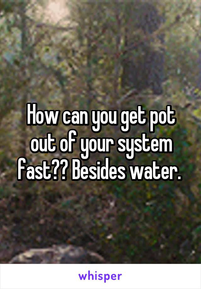 How can you get pot out of your system fast?? Besides water.
