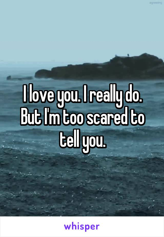 I love you. I really do. But I'm too scared to tell you.