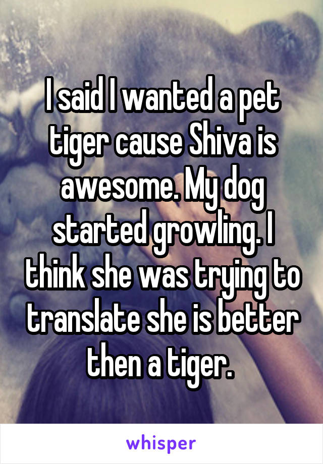 I said I wanted a pet tiger cause Shiva is awesome. My dog started growling. I think she was trying to translate she is better then a tiger.