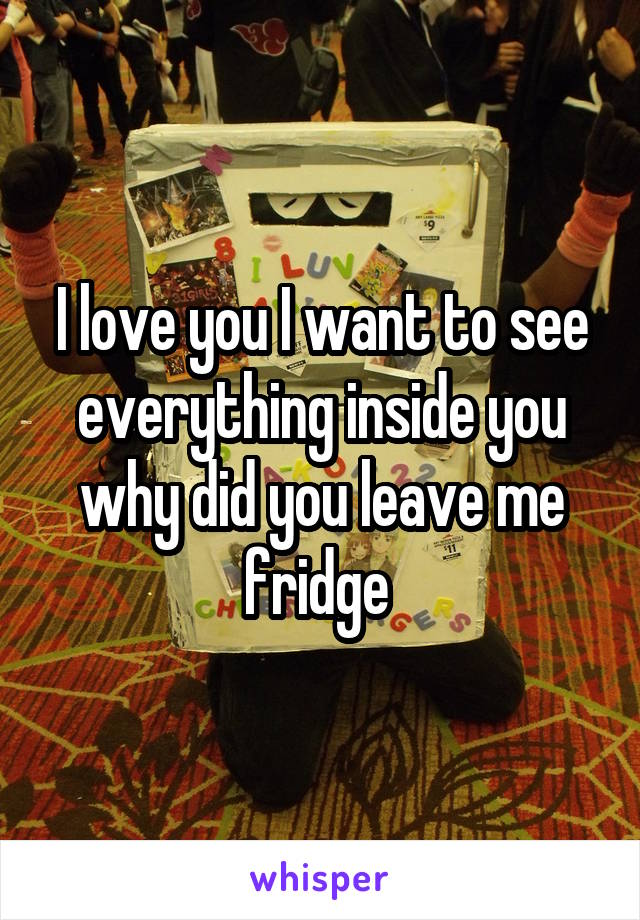 I love you I want to see everything inside you why did you leave me fridge