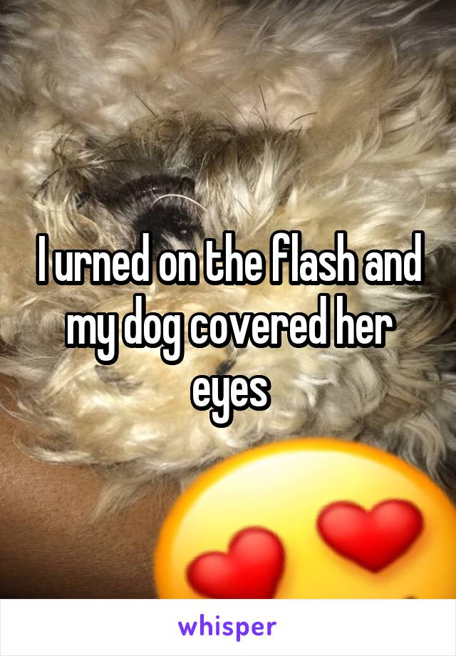 I urned on the flash and my dog covered her eyes