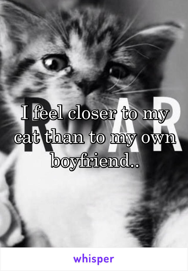 I feel closer to my cat than to my own boyfriend..