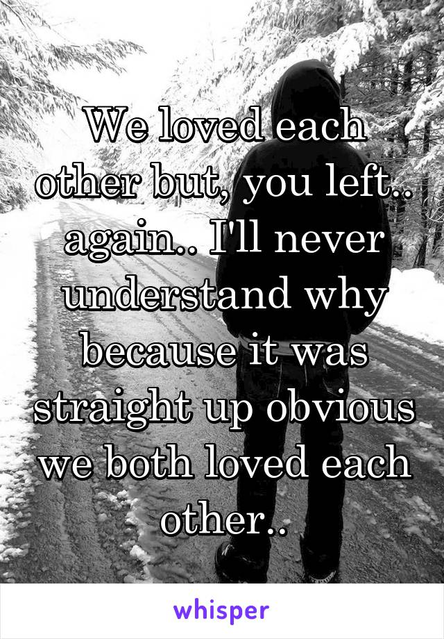 We loved each other but, you left.. again.. I'll never understand why because it was straight up obvious we both loved each other..