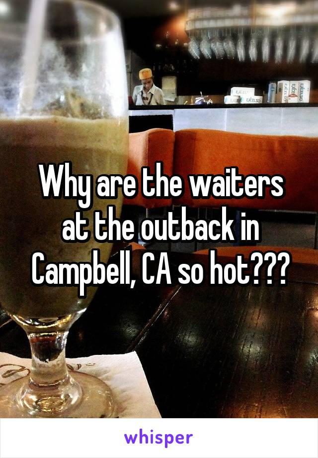 Why are the waiters at the outback in Campbell, CA so hot???