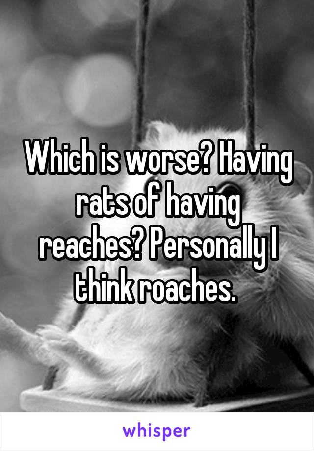 Which is worse? Having rats of having reaches? Personally I think roaches.