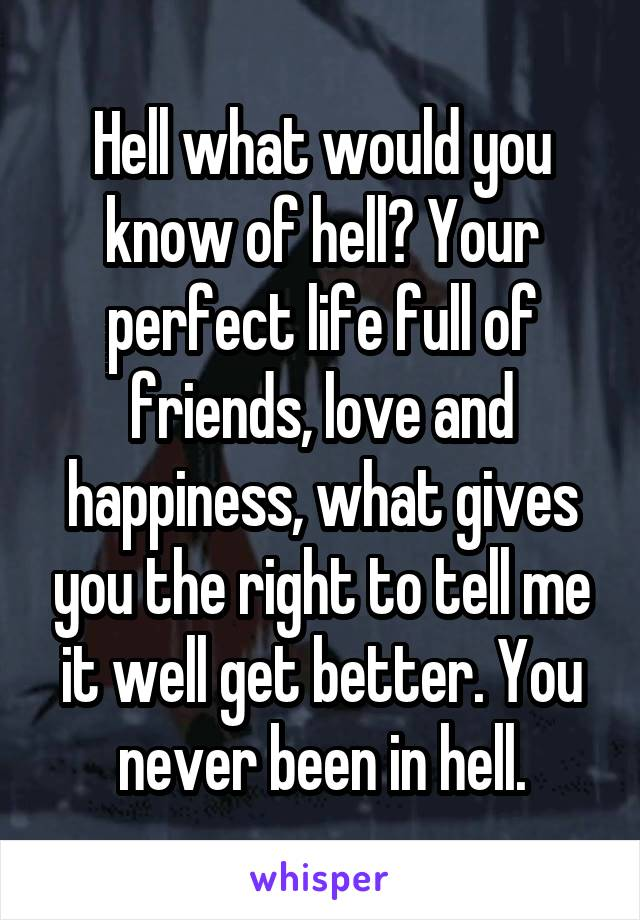 Hell what would you know of hell? Your perfect life full of friends, love and happiness, what gives you the right to tell me it well get better. You never been in hell.