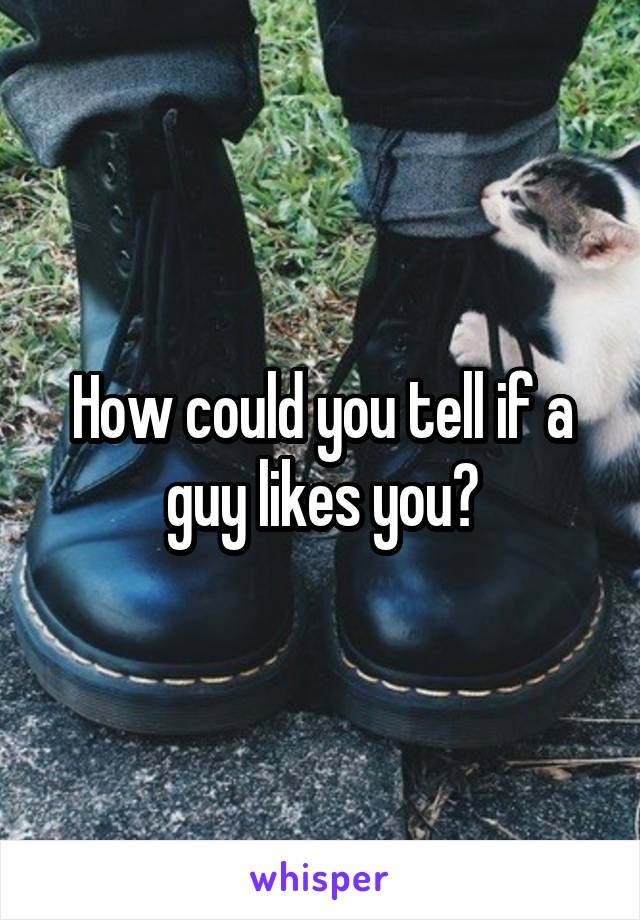How could you tell if a guy likes you?