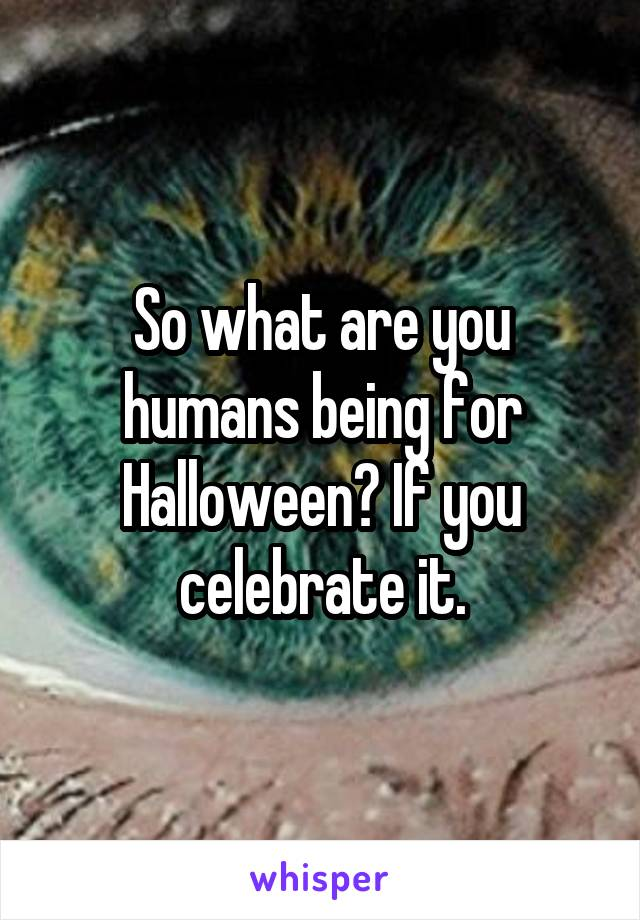 So what are you humans being for Halloween? If you celebrate it.