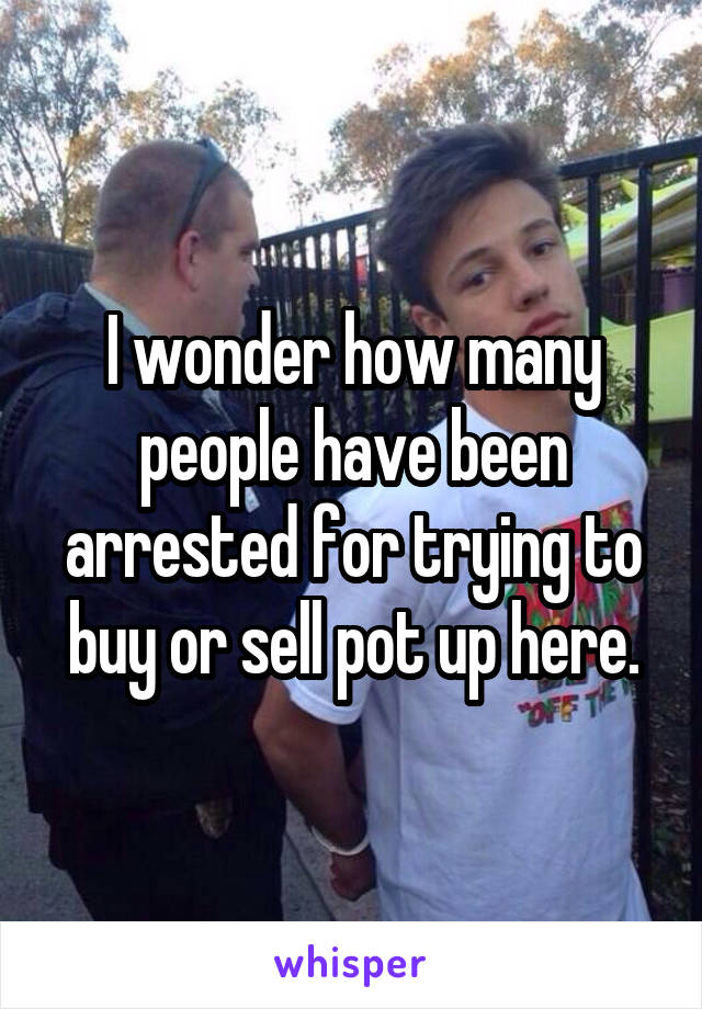 I wonder how many people have been arrested for trying to buy or sell pot up here.