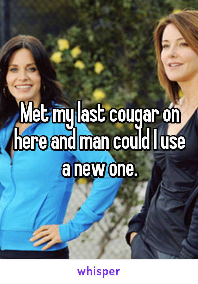 Met my last cougar on here and man could I use a new one.