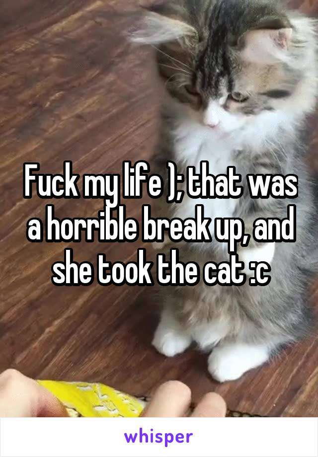 Fuck my life ); that was a horrible break up, and she took the cat :c