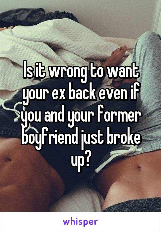 Is it wrong to want your ex back even if you and your former boyfriend just broke up?