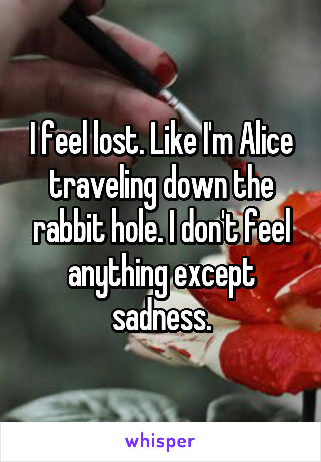 I feel lost. Like I'm Alice traveling down the rabbit hole. I don't feel anything except sadness.