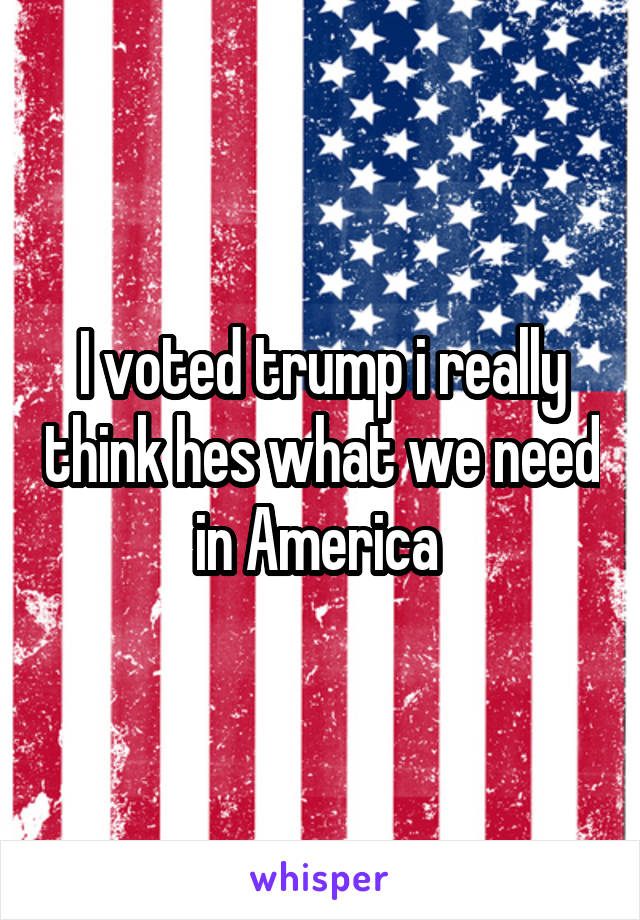 I voted trump i really think hes what we need in America