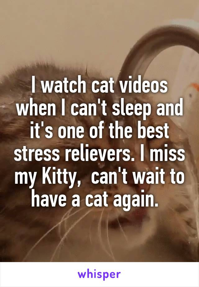 I watch cat videos when I can't sleep and it's one of the best stress relievers. I miss my Kitty,  can't wait to have a cat again.