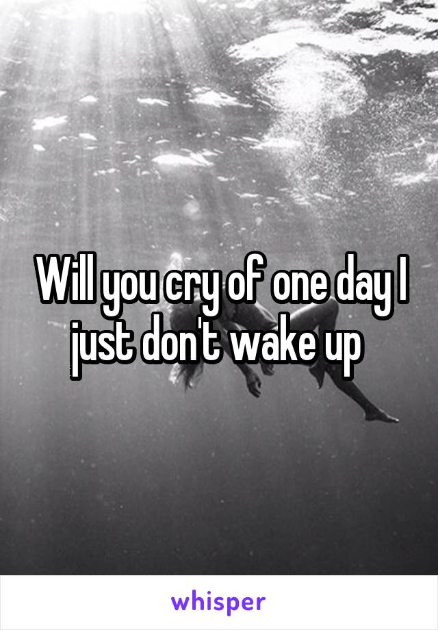 Will you cry of one day I just don't wake up