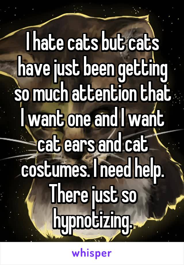 I hate cats but cats have just been getting so much attention that I want one and I want cat ears and cat costumes. I need help. There just so hypnotizing.