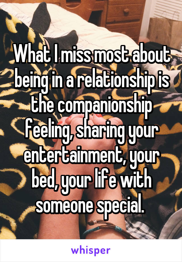 What I miss most about being in a relationship is the companionship feeling, sharing your entertainment, your bed, your life with someone special.