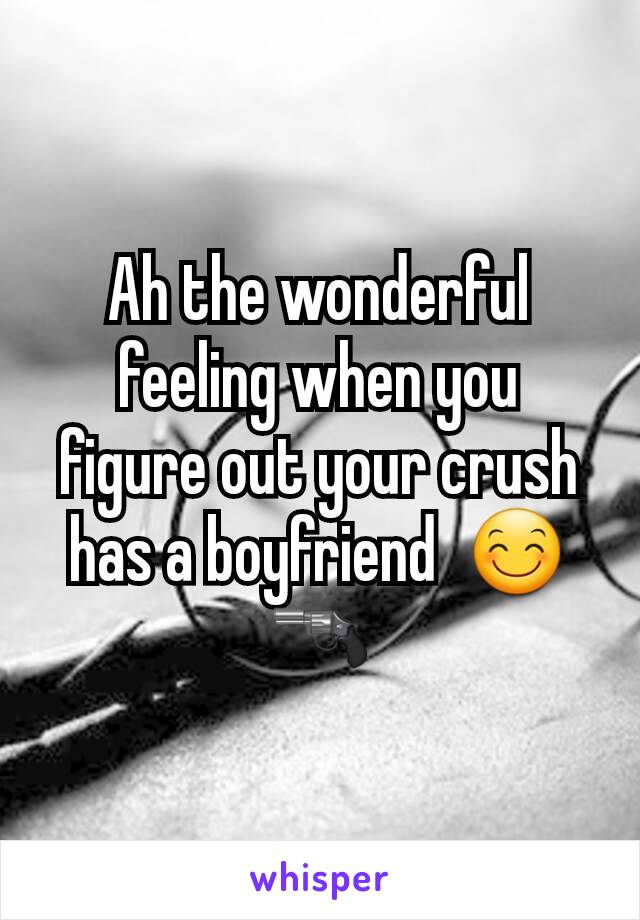 Ah the wonderful feeling when you figure out your crush has a boyfriend  😊🔫