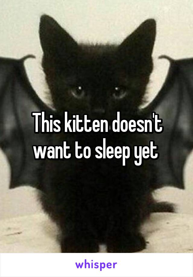 This kitten doesn't want to sleep yet