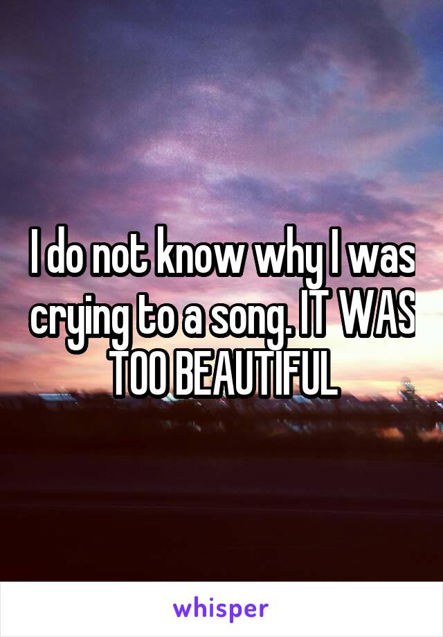I do not know why I was crying to a song. IT WAS TOO BEAUTIFUL