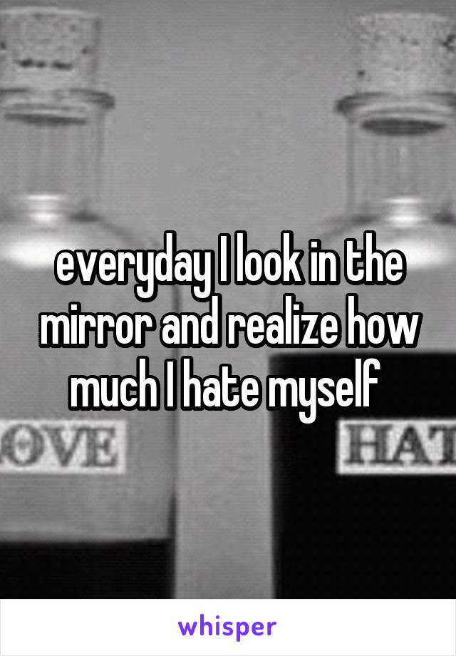 everyday I look in the mirror and realize how much I hate myself
