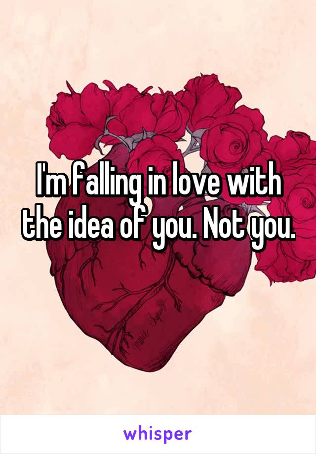 I'm falling in love with the idea of you. Not you.