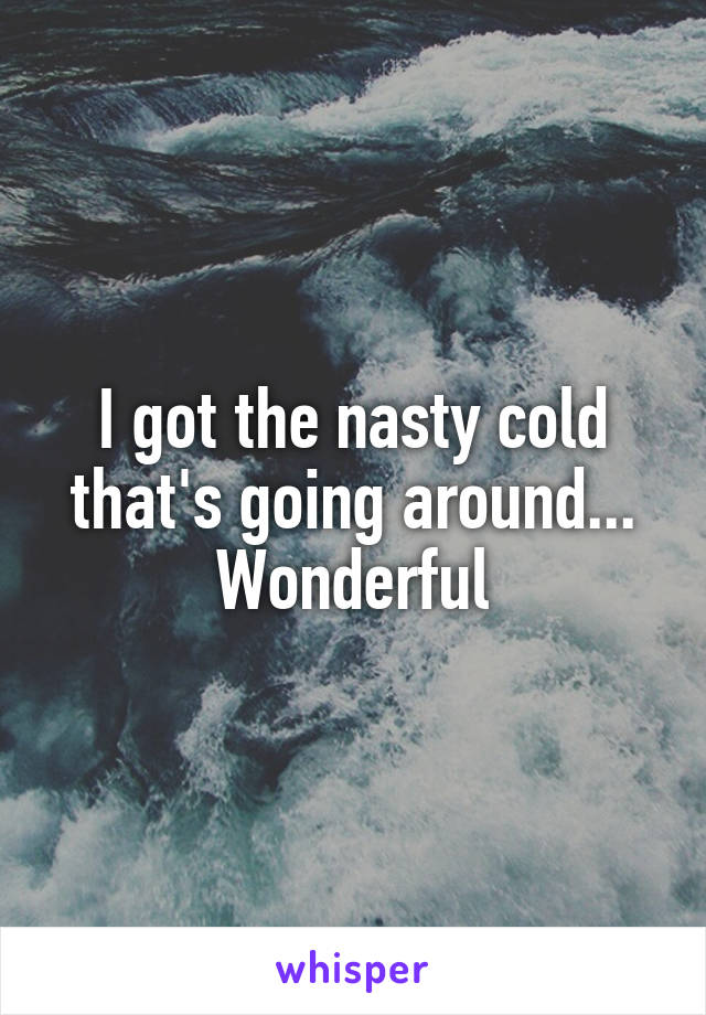 I got the nasty cold that's going around... Wonderful