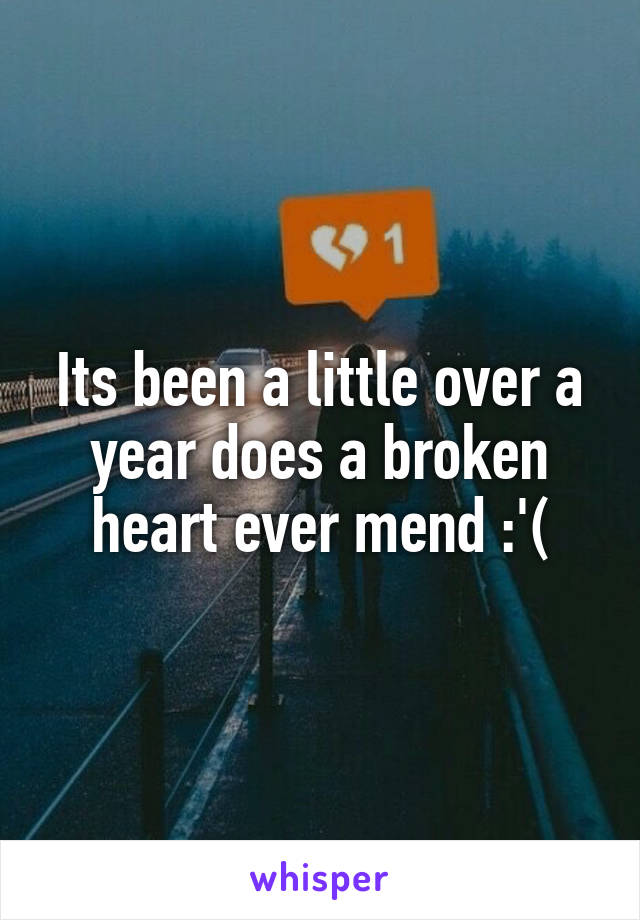 Its been a little over a year does a broken heart ever mend :'(