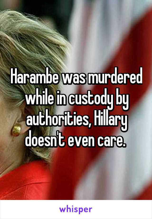 Harambe was murdered while in custody by authorities, Hillary doesn't even care.