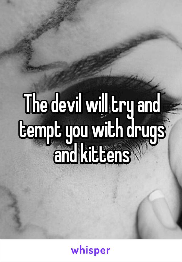 The devil will try and tempt you with drugs and kittens