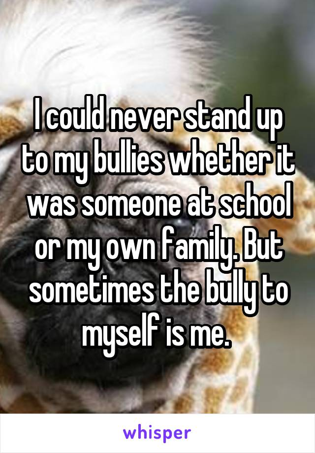 I could never stand up to my bullies whether it was someone at school or my own family. But sometimes the bully to myself is me.