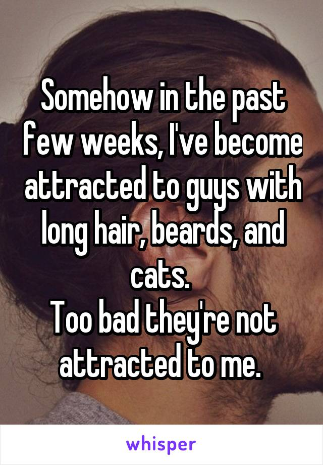 Somehow in the past few weeks, I've become attracted to guys with long hair, beards, and cats.  Too bad they're not attracted to me.
