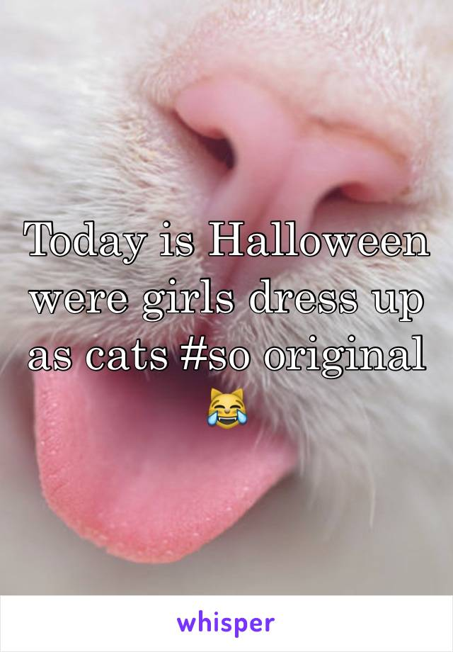 Today is Halloween were girls dress up as cats #so original  😹