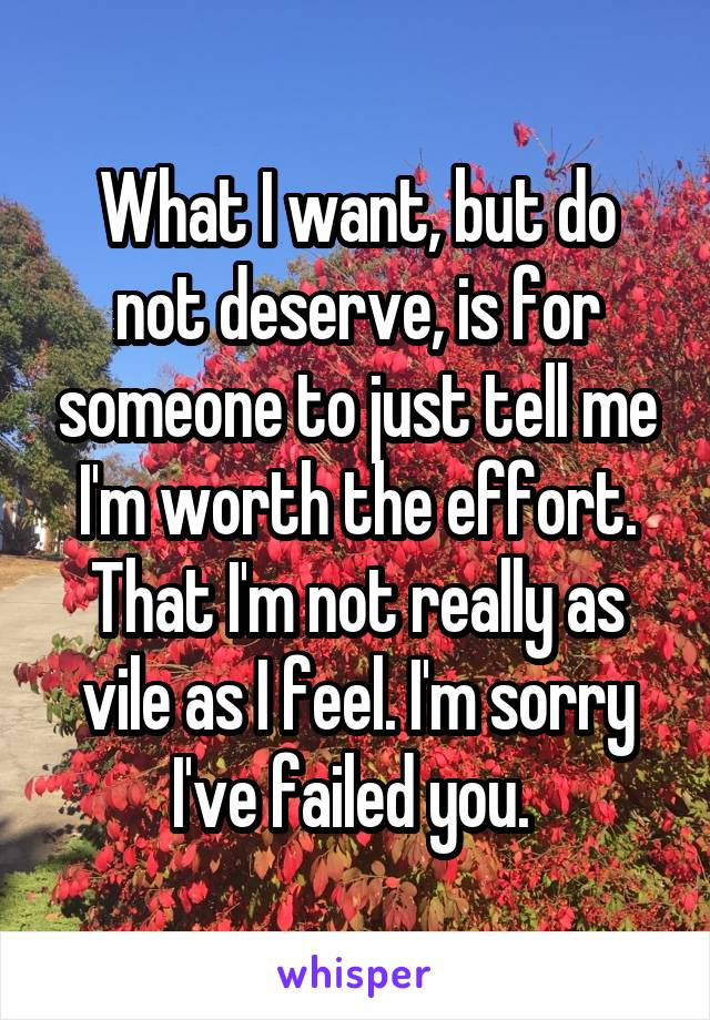 What I want, but do not deserve, is for someone to just tell me I'm worth the effort. That I'm not really as vile as I feel. I'm sorry I've failed you.