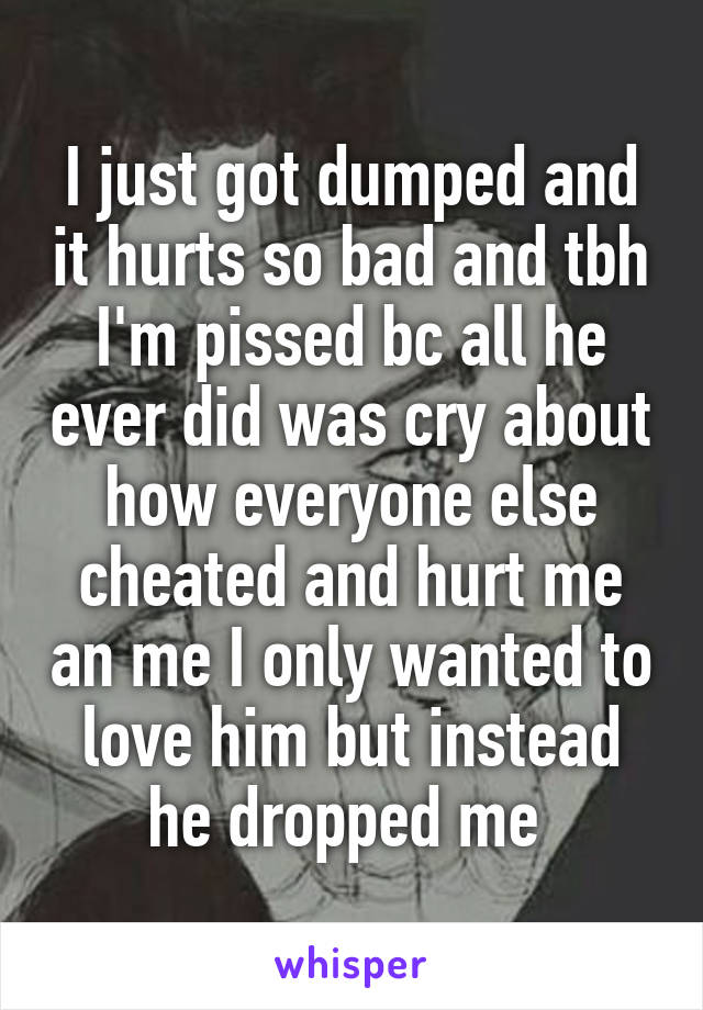 I just got dumped and it hurts so bad and tbh I'm pissed bc all he ever did was cry about how everyone else cheated and hurt me an me I only wanted to love him but instead he dropped me