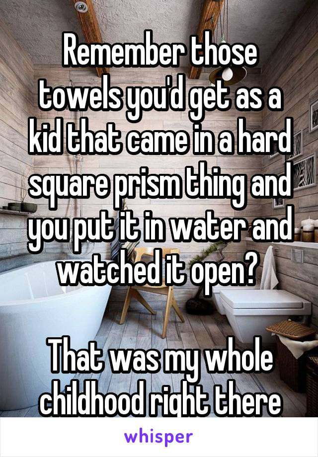 Remember those towels you'd get as a kid that came in a hard square prism thing and you put it in water and watched it open?   That was my whole childhood right there