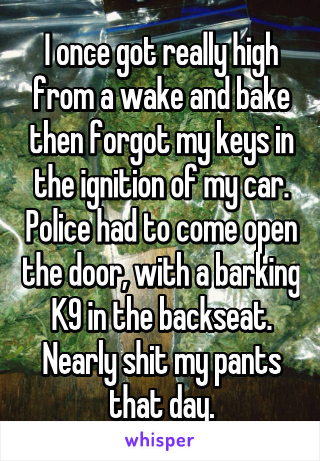I once got really high from a wake and bake then forgot my keys in the ignition of my car. Police had to come open the door, with a barking K9 in the backseat. Nearly shit my pants that day.