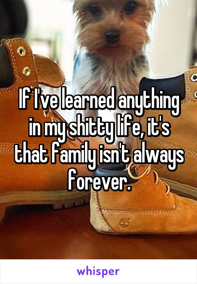 If I've learned anything in my shitty life, it's that family isn't always forever.